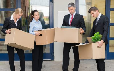 What are the Pros of hiring professional office Removalists in Australia?